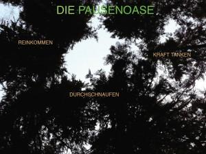 Pausenoase